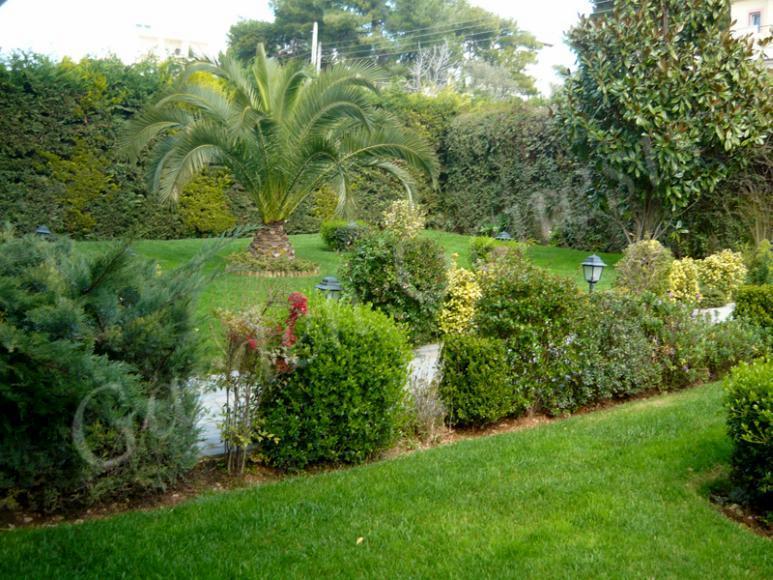 Garden Genesis